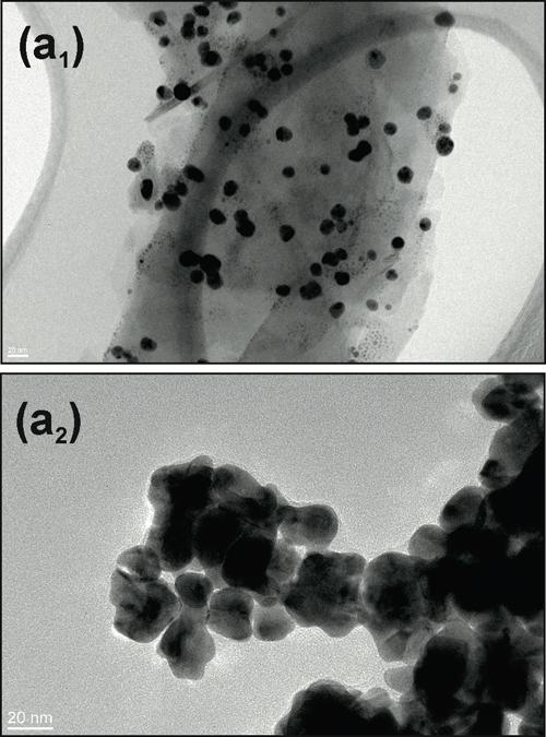 Un paso adelante hacia el uso de nanopartículas para combatir la resistencia bacteriana