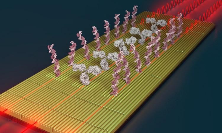 Biosensores nanofotónicos para la medicina personalizada