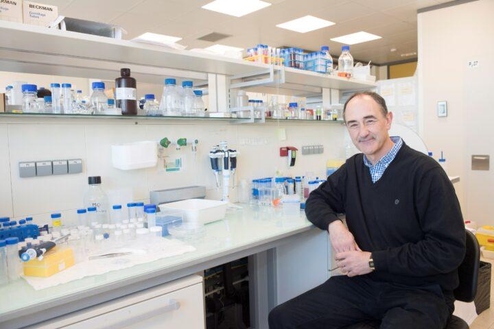 """Desvelan un mecanismo para obtener """"nanotornillos"""" metálicos con gran potencial para aplicaciones biomédicas"""