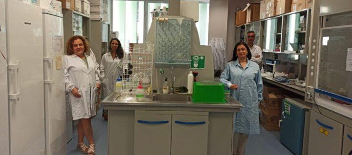 Desarrollan apósitos liberadores de biocidas de origen natural para tratar heridas tópicas y evitar resistencias a antibióticos