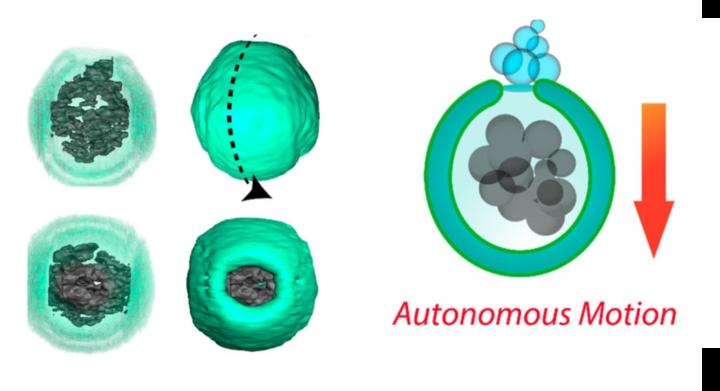 Nuevos nanomotores biodegradables para aplicaciones biomédicas