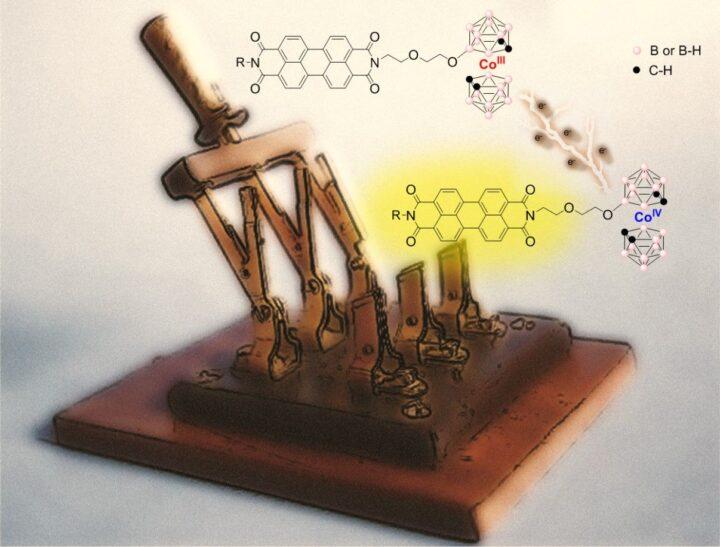 Interruptores moleculares fluorescentes inteligentes basados en compuestos a base de boro