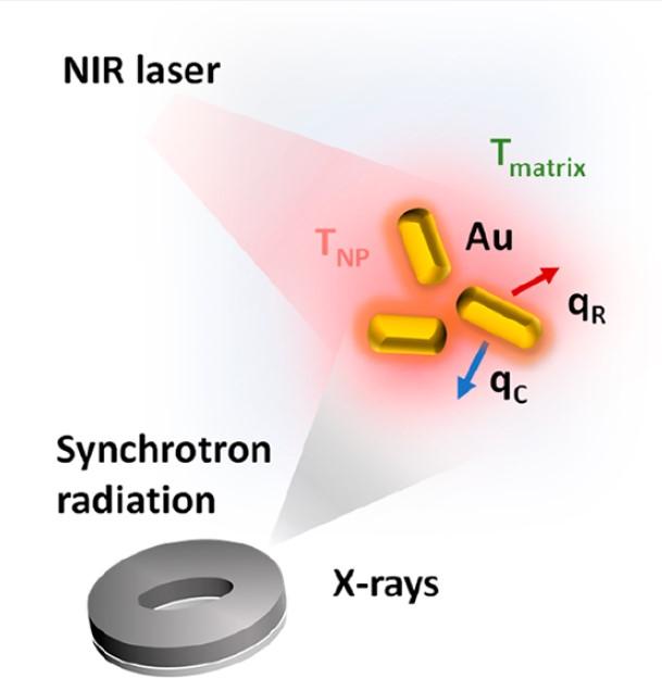 Nanotermometría para mejorar los tratamientos contra el cáncer