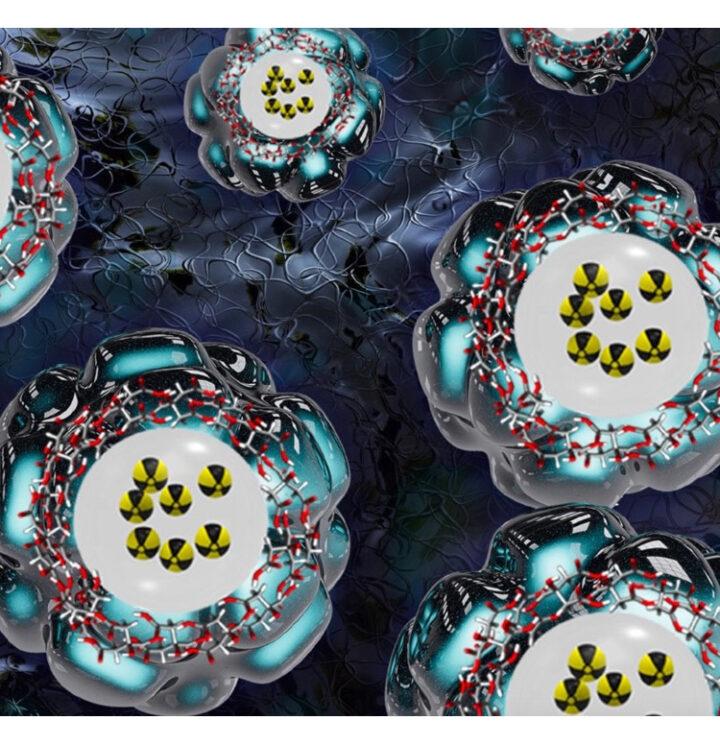 Un nuevo método basado en nanopartículas logra detectar aterosclerosis en ratones jóvenes